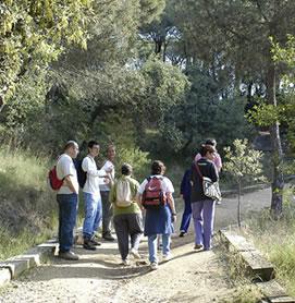 parque natural montnegre